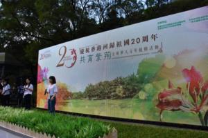 """湖南青年代表在港参加""""共育紫荆""""全球华人青年植树活动"""